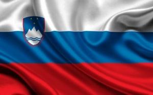 flag второе гражданство словения